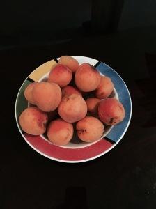 My fresh apricots