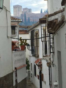 Typical Street with the Alhambra Looming