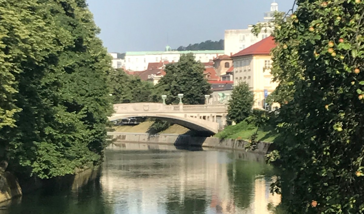 Discovering More Dragons in Ljubljana